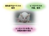 ヒト化マウス研究所